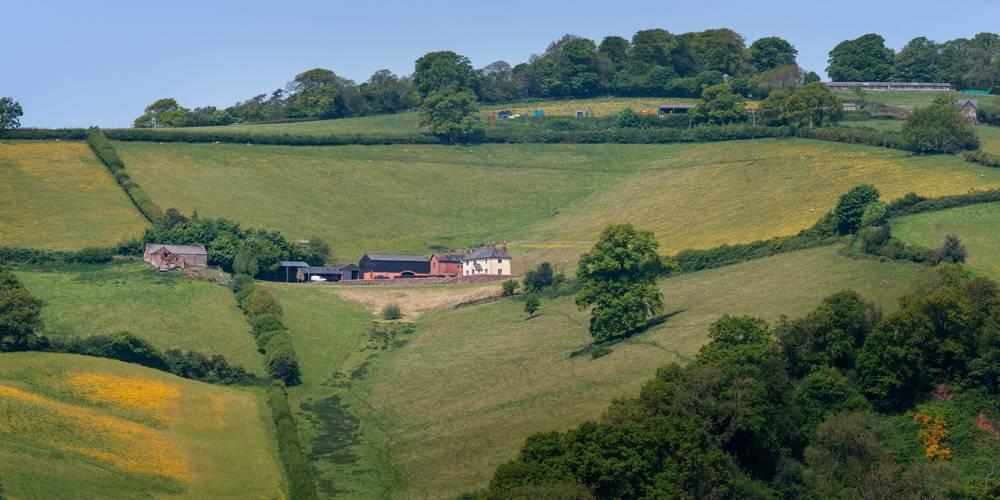 Devon Farm Luxury Homestay