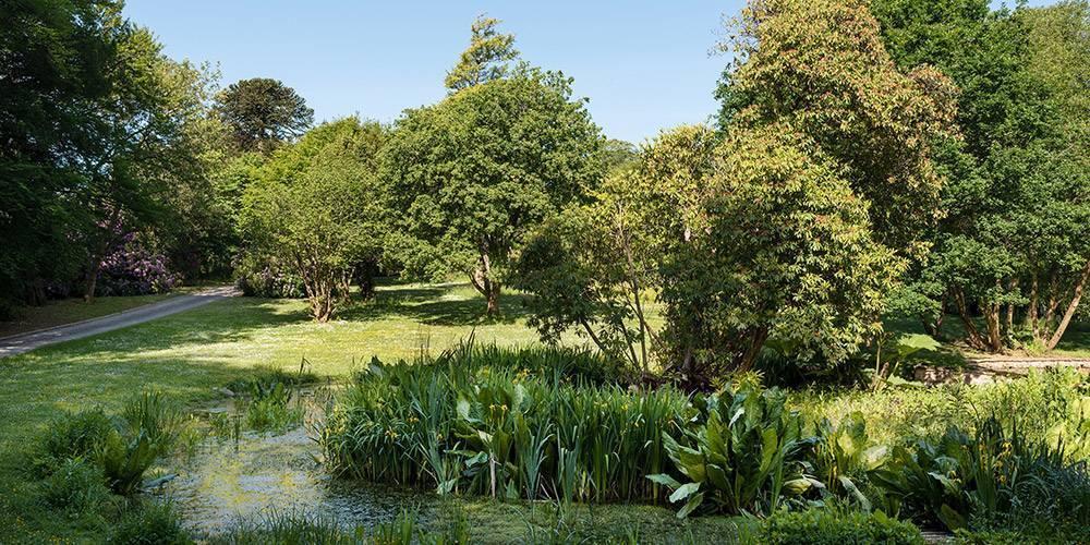 Devon architects manor house landscape ponds