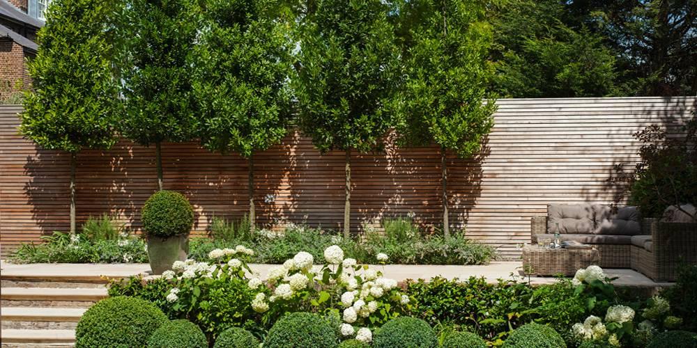 Architects in Devon London Townhouse Interior Design Cedar wood screening landscape design